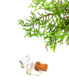 Branch of decorative home Christmas-tree and champagne wine cork Royalty Free Stock Photos
