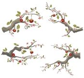 Branch design set Stock Photo