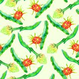 Branch with dragon fruit and it`s flower, seamless pattern design soft yellow background. Branch with dragon fruit and it`s flower, seamless pattern design, hand Stock Images