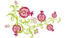 Branch of East Pomegranate Pat Royalty Free Stock Photos