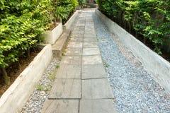 Branch, Environment, Garden Royalty Free Stock Photo