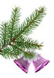 Branch of fir Royalty Free Stock Photos