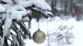A branch of fir on the background of snow and falling snow. stock video