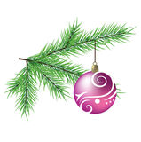 Branch of fir with ball. A  realistic branch of fir with ball Royalty Free Stock Photography