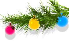 Branch fir and Christmas ball. Branch fir and Christmas ball on white Stock Images