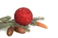 Branch of fir tree,ball and cones. Royalty Free Stock Images
