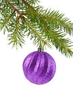 Branch of fir-tree and ball Stock Photos