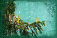 Branch fir tree with candle. Grunge Stock Photo