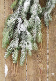 Branch of a fir-tree and snow Stock Photo