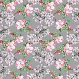 Branch Flowers Apple and Cherry. Handiwork Watercolor Seamless Pattern on a Gray Background. Apple Cherry Tree Flowers Watercolor Floral Seamless Pattern Royalty Free Stock Images