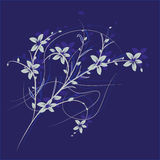 Branch with flowers on a blue background Royalty Free Stock Photography