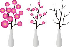 Branch and flowers in vase. Dry branch of the tree or with flowers, in an elegant white vase - cartoon style Stock Photo