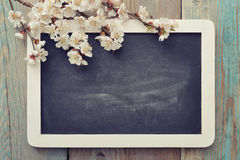 Branch with framed blackboard Stock Photo