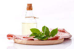 Branch of fresh  basil in wooden plate with olive oil . Royalty Free Stock Photo