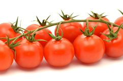 Branch of fresh cherry tomatoes isolated on white Stock Photography