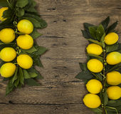 Branch of fresh juicy Sicilian lemons on a wooden background Royalty Free Stock Images