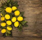 Branch of fresh juicy Sicilian lemons on a wooden background Royalty Free Stock Photography