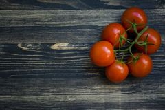 A branch of fresh red tomatoes on a black background royalty free stock photo