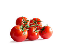 Branch of fresh red tomatoes isolated on white backround Stock Photography