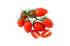 A branch of fresh ripe tomatoes. A branch of fresh ripe red tomatoes Royalty Free Stock Photography