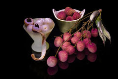 The branch of fruit Lychee Stock Images
