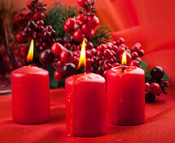 Branch of a fur-tree and a candle Stock Images