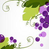 Branch of grape with leaves. Abstract vector background design t Royalty Free Stock Photos