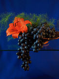 The branch of grapes. The branch of dark grapes lies on a small stand allocated on a dark blue background Royalty Free Stock Photos