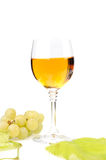 Branch of grapes and glass of wine. Isolated on white background Royalty Free Stock Photography