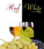 Branch of grapes and glass of wine. Isolated on white background Stock Images