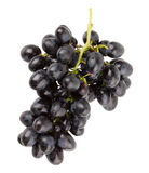 Branch of grapes on white background Stock Images