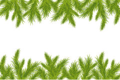 Branch Of Green Christmas Tree. Vector Royalty Free Stock Photography
