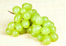Branch of green grapes Stock Photos