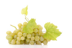 Branch of green grapes Royalty Free Stock Images