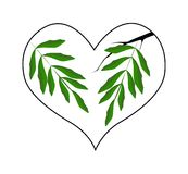 Branch of Green Leaves in A Heart Shape Stock Images