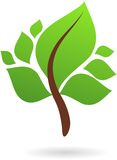 A branch with green leaves - nature logo / icon stock illustration