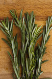Branch of rosemary on a wooden board Stock Photos