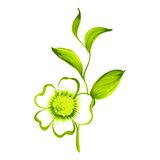 Branch of green tea with flowers and leaves Stock Photography