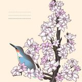 Branch of hand drawn cherry blossom with the bird Royalty Free Stock Images