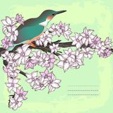 Branch of hand drawn cherry blossom with the bird Royalty Free Stock Photography