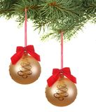 Branch with hanging christmas balls Royalty Free Stock Image