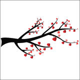 Branch With Heart Royalty Free Stock Photo