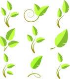 Branch icon set stock image