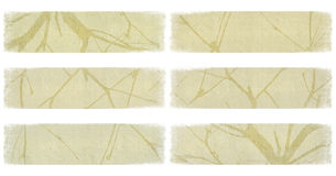 Branch on ivory paper banner set isolated Royalty Free Stock Photography