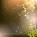Branch with leaves on an abstract background with rays and spots Royalty Free Stock Photo