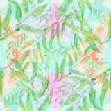 Branch with leaves - drawing with colored pencils. Eucalyptus - medicinal, perfumery and cosmetic plants. Weeping willow. Seamles Stock Photo