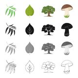 Forest related icon set Royalty Free Stock Photography