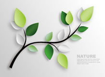 Branch and leaves. Nature wall decoration Royalty Free Stock Photos