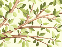 Branch. With leaves vector illustration Royalty Free Stock Photos