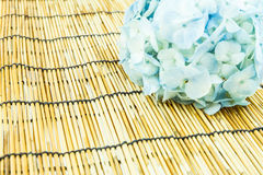 Branch of light blue hydrangea flowers  on bamboo blind backgrou Royalty Free Stock Photos